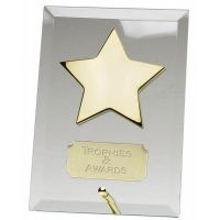Crest5 Gold Star Jade Plaque</br>JC002AAS